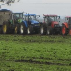 crop-vege-growing1-8